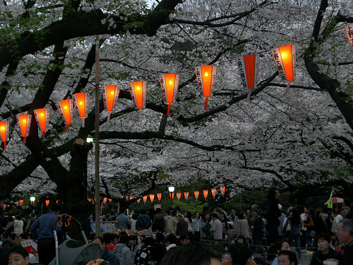 evening lantern ueno park Travel To Tokyo   Top 10 Best Places