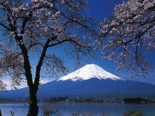 fuji mountain Travel To Japan   Top 10 Best Places