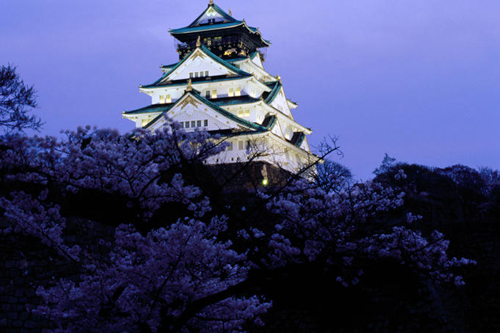 Osaka castle lit up at night, with cherry blossoms in the foreground.