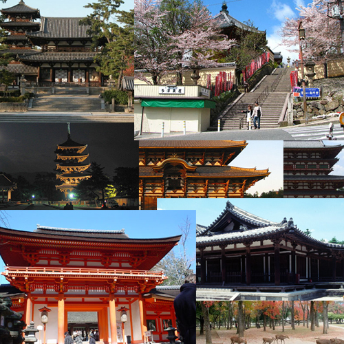 nara Travel To Nara   Top 8 Best Places