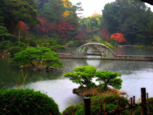 The beauty and tranquility of Shukkeien Garden